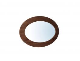 Tom Schneider Ellipse Mirror
